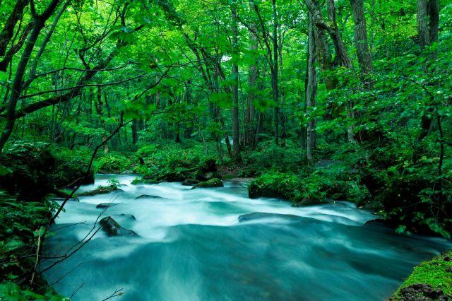 川 水資源